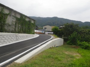 IMGP0163